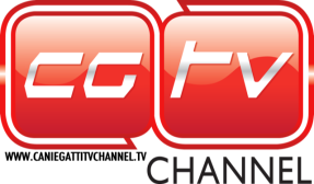 cgtv-logo